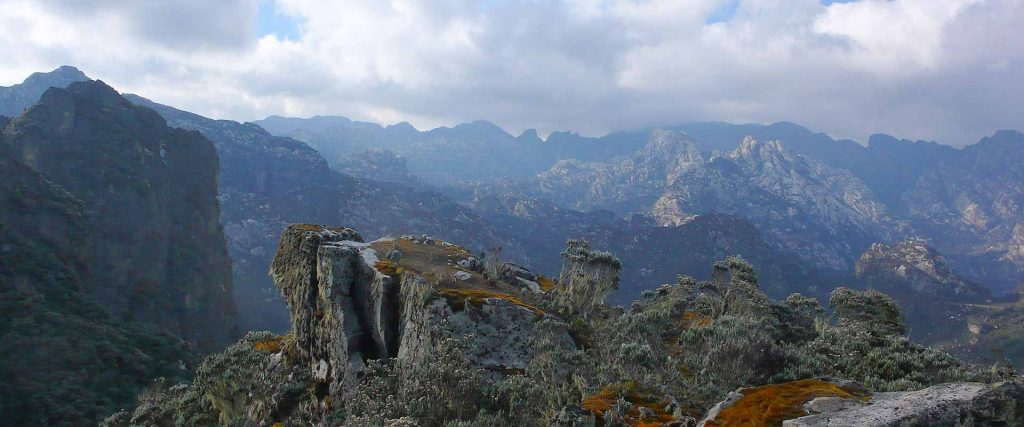3 Day Rwenzori Mountains, Mahoma Trail Hike