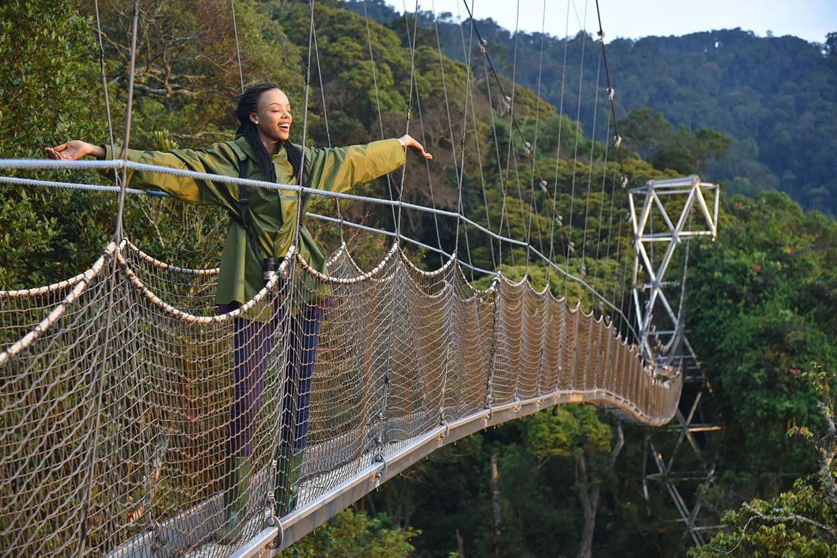 Nyungwe Forest Canopy Walk