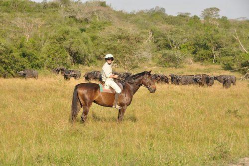 horse riding safari in Lake Mburo NP