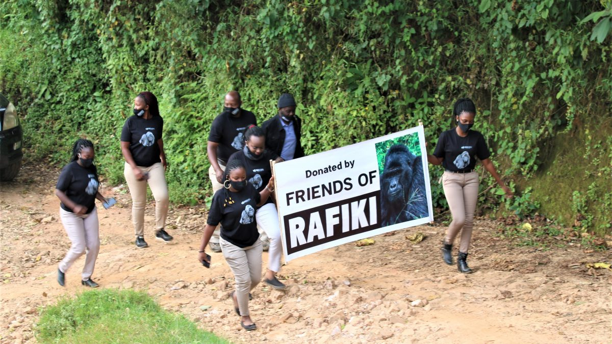 Rafiki Gets Justice, Gorilla Killers Sentenced to Prison Life