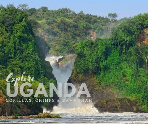 Explore Uganda Safari Trip, Small Group Africa Tours
