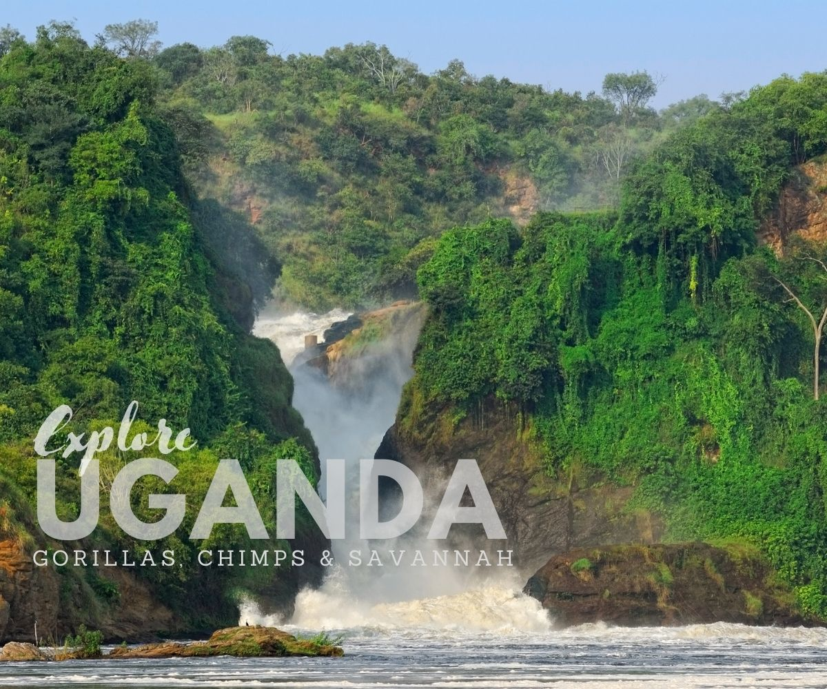 12 day Explore Uganda, scheduled small group safari trip with set departures