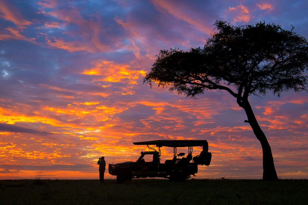 Why Choose a Guided Africa Safari
