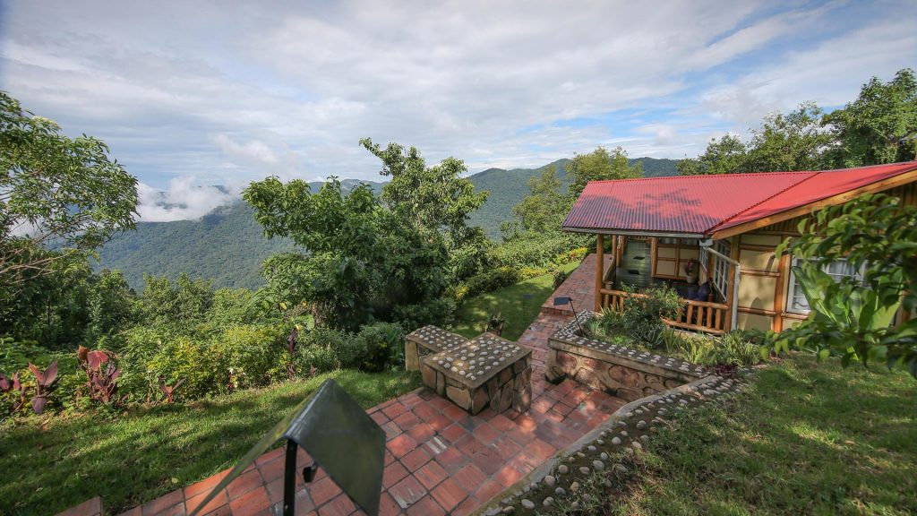 Safari Lodges and Camps in East Africa - A Restorative Safari Vacation in Southwestern Uganda — for Sustainable Travelers