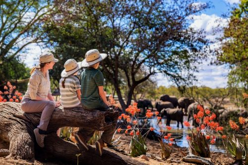 Kenya Family Safari for Teenagers