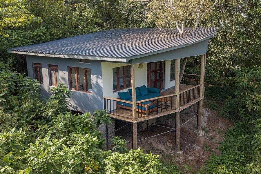 Turaco Treetops Lodge in kibale